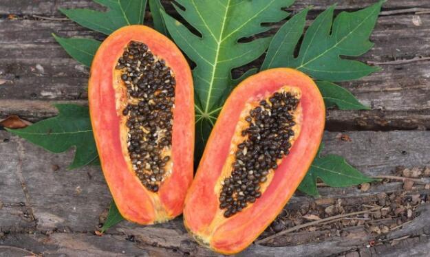 木瓜籽用于肝脏,肠道和肾脏排毒