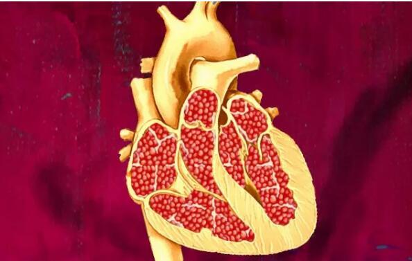 石榴对心脏的5大健康益处
